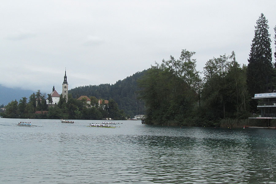 An eights race approaches the finish